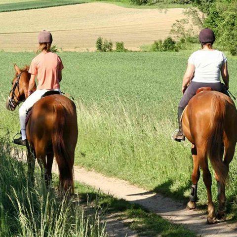 excursiones-a-caballo